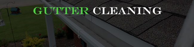 gutter_cleaning